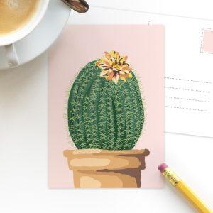 Cactus roze ansichtkaart
