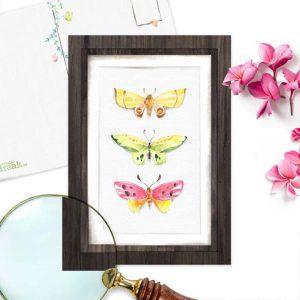 Vlinders ansichtkaart