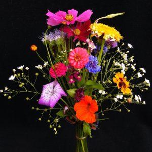 Pluktuin bloemenmix